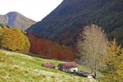 I colori della valle Uccea (Danilo Clemente)