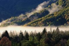 Nebbia in val Resia (Daniele Buttolo)