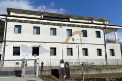 Museo arrotino