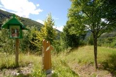 Sentiero per Coritis (Marco Di Lenardo)