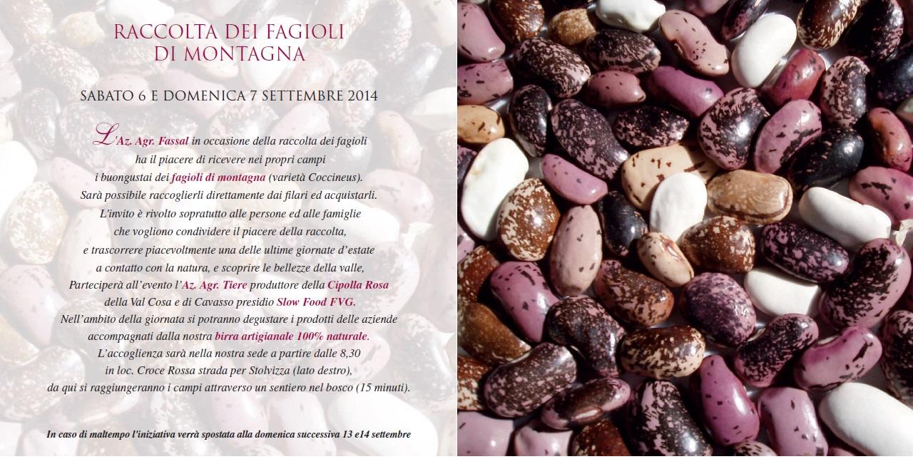 Invito_Fagioli_2